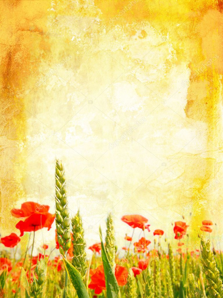 Beautiful vintage background with poppies — Stock Photo #6424202