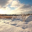 Stock Photo: Beautiful wintery landscape