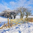Royalty-Free Stock Photo: Winter in Scotland