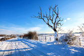 Snowy road in the countryside, Scotland — Stock Photo