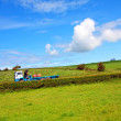 A lorry on the rural road — Stock Photo #6604549