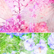 Beautiful floral background — Stock Photo #6605447