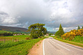 A road in the countryside — Stock Photo
