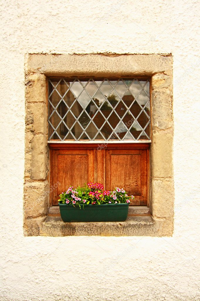 Lovely old window with flowers — Stock Photo #6605561