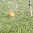 Croquet game — Stock Photo #5681580