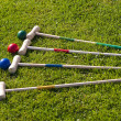 Croquet game — Stock Photo #5681588