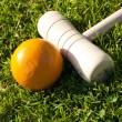 Croquet stick and yellow ball — Stock Photo #5681591