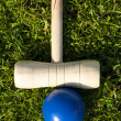 Croquet game — Stock Photo #5681594