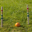 Croquet game — Stock Photo #5681596