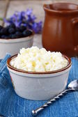 Fresh, natural cottage cheese dairy product — Stock Photo