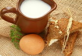 Glass jug with milk and eggs on natural background of rustic style — Stock Photo