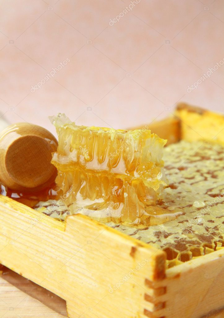 Wooden box with natural honeycombs and honey — Stock Photo #5585229