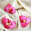 Royalty-Free Stock Photo: Pink orchids on a beige soft, luxurious silk