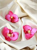 Pink orchids on a beige soft, luxurious silk — Stock Photo
