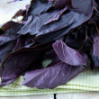 Red purple basil on a wooden table — 图库照片