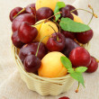 Royalty-Free Stock Photo: Mix of ripe berries, apricot and cherry, plum in a wicker basket