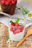 Dessert sweet cream with raspberries in a cup — Stock Photo
