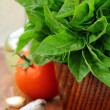 Basil, pasta and olive oil - still life in the Italian style — Stock Photo #5964123