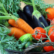 Stock Photo: Mix fresh vegetables (carrots, eggplant, cucumbers, tomatoes) in a black wi