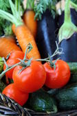 Mix fresh vegetables (carrots, eggplant, cucumbers, tomatoes) in a black wi — Stock Photo
