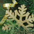 New Year's tree fir with Christmas decorations — Stockfoto