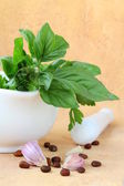 Italian Still Life Mortar with garlic and basil herbs and olive oil — Stock Photo