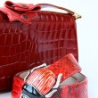 Stock Photo: Women's Accessories red bag and stylish belt