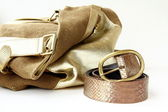Female decorative gold bag and a stylish belt — Stock Photo