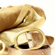Female decorative gold bag and a stylish belt — Foto de Stock