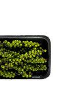 Green pepper cone — Stock Photo