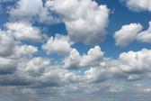 Cloudscape. White clouds — Stockfoto