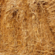Pressed wheat straw — Stock Photo