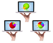Dimensional colorful chart collection in laptop 2 — Stock Photo