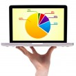 A male hand holding a laptop with pie chart — Stock Photo