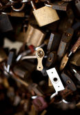Group of locks — Stock Photo
