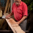 Woodcarver working with mallet and chisel — Stock Photo #6115673