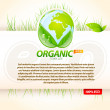 Organic eco template 1 — Stock Vector