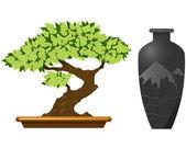 Bonsai tree — Stock Vector