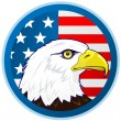 Bald eagle and American flag — Stock Vector #5625127
