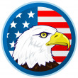 Bald eagle and American flag — Stock Vector
