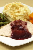Delisious thanksgiving turkey breast diner — Stock Photo