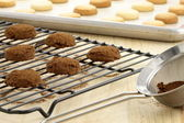 Chocolate cookies und shortbread cookies — Stockfoto