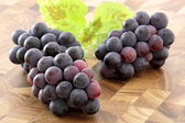 Fresh concord grapes — Stock Photo