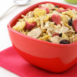 Healthy fresh cereal — Foto de Stock