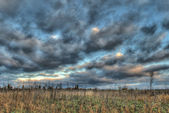 Gray field, blue sky and gray clouds — Stock Photo