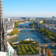 Stock Photo: View from Notre Dame De Paris