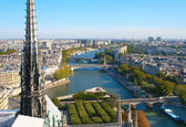 View from Notre Dame De Paris — Stock Photo