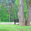Stock Photo: Halting under trees