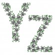 Hand drawing ornamental alphabet. Letter YZ — Stock Photo