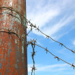 Barbed wire on the pole against the blue sky — Stock Photo